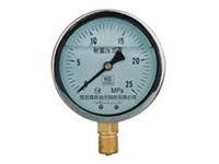 YN-系列耐震压力表